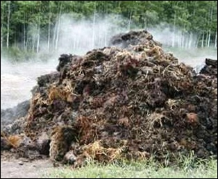 A big pile